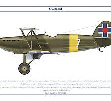 Avia B-534 Slovakia 1 by Claveworks
