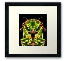 Greengrocer XF Framed Print