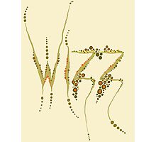 Wizz - Cream and brown Photographic Print