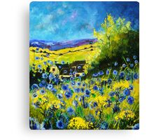blue cornflowers in ver Canvas Print