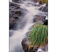 Lesmurdie Falls by Kirk  Hille