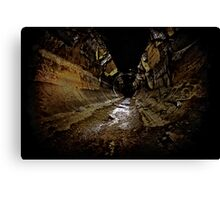 Why You Never Wallpaper a Sewer..... Canvas Print