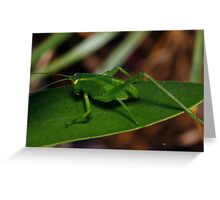 Wee Hopper Greeting Card