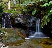 Little Falls by Warren. A. Williams