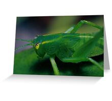 Grass hopper Greeting Card