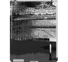 Psychmaster Solitude On The Beach BW iPad Case/Skin