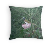 Purple Protea & Blue Jewel Throw Pillow