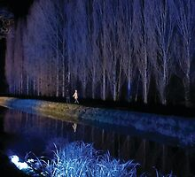 Anglesey Abbey, Winter Lights 2014 #1 by NA-Designs