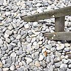 Beach still life by Richard Flint