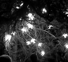 Anglesey Abbey, Winter Lights 2014 #4 by NA-Designs