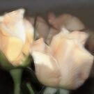 Faded Rose Petal Dreams by Lesley Smitheringale