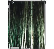 Anglesey Abbey, Winter Lights 2014 #6 iPad Case/Skin