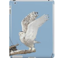 Up up and away iPad Case/Skin