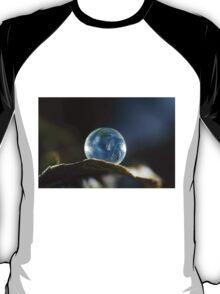 Frozen Balance  T-Shirt