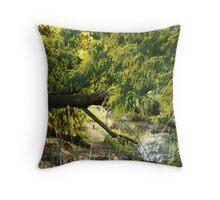 Wattle Creek Throw Pillow