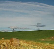 Farmscape by Michael  Dreese