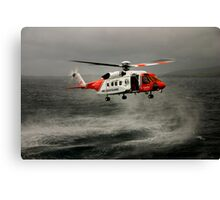Hovering around Canvas Print