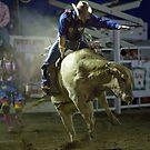 Bull Rider by Charlene Aycock