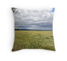 Barley Field Near Kelso Throw Pillow
