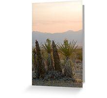 Yucca schidigera Greeting Card