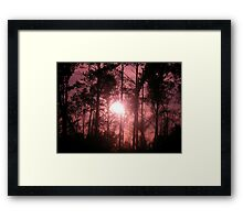 Pink Sunset in the Trees II Framed Print