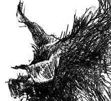 Boar by peterpeter