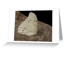Paper wings Greeting Card