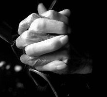 hands by imagegrabber