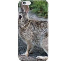 If I don't move I'm invisible! iPhone Case/Skin