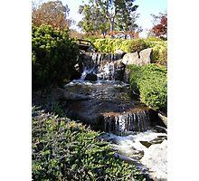 Japanese Gardens, Cowra Photographic Print