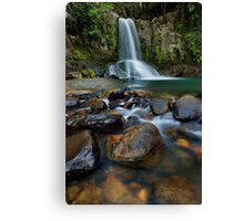 Waiau Falls Rocks Canvas Print