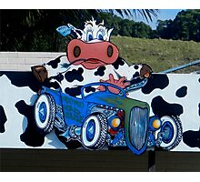 Cow Driven Sign N.S. W.  Australia Photographic Print