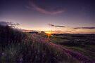 Bamburgh Castle by Nigel Bangert