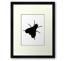 Fly Insect Framed Print