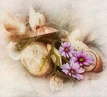 Cosmos and Seashells by Carolyn Staut