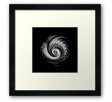 BLACK and WHITE, FRACTALS, modern gifts/decor, 3D illusion Framed Print