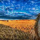 Bales by Nigel Bangert