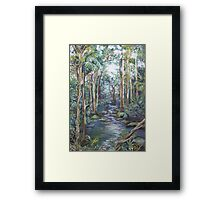 Kondalilla National Park Framed Print