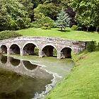 Palladian Bridge : Stourhead by Colin Hollywood Photography