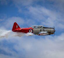Havard in Flight by Karen Hulse