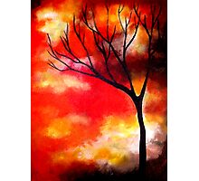 Mist in a Sunset Photographic Print