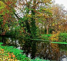 River Wandle in Autumn, Morden, England by atomov