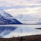 Lake Tekapo  by John Brotheridge