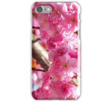 Cherry Blossom Filled Spring iPhone Case/Skin