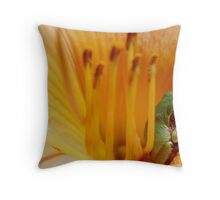 Comfy Cozy Throw Pillow