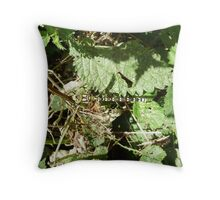 SOUTHERN HAWKER DRAGONFLY(AESHNA CYANEA) Throw Pillow