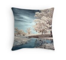 Dam Reflections Throw Pillow