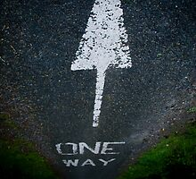One Way by Viv van der Holst
