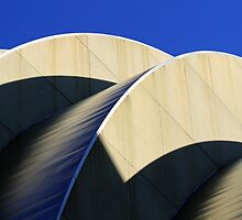Kauffman Center Curves and Shadows by Catherine Sherman