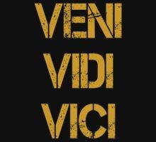 VENI VIDI VICI by SCRTSQRL